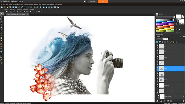 Photo and graphics software